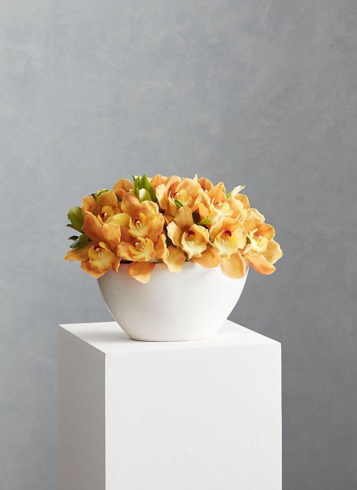 Cymbidium Orchid Bowl