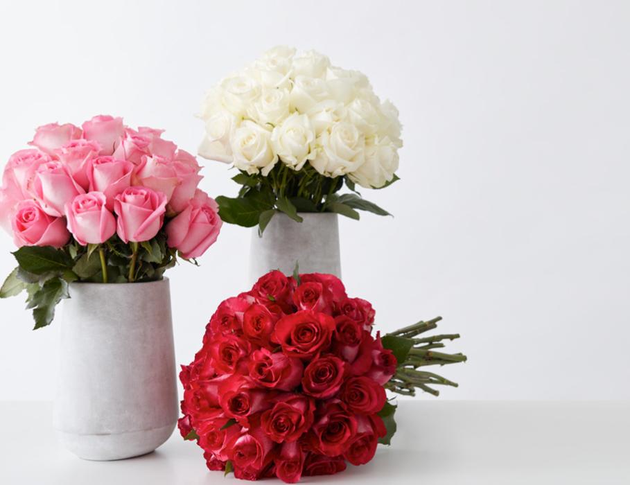 Roses & Romance